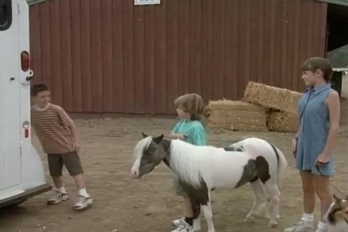 Ragtime là chú ngựa lùn dễ thương, thông minh, sống cùng gia đình của Jerry.
