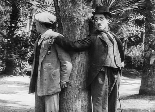 Charlie trêu đùa họ bằng trò giả vờ ôm một cái cây
