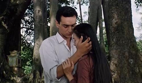 ''Bông Sen'' kể về mối tình của Liên - cô gái xinh đẹp người Việt và chàng lính Pháp Ali.