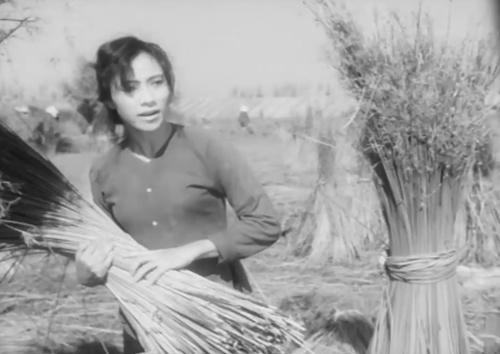 Một phân cảnh trong phim ''Truyện Vợ Chồng Anh Lực''