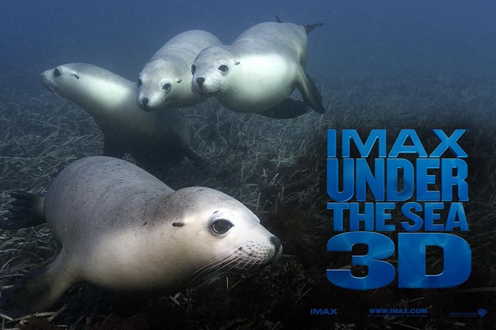 Qua thước phim tài liệu ''Under The Sea 3D'', khán giả sẽ được khán phá phần nào vẻ đẹp của biển.