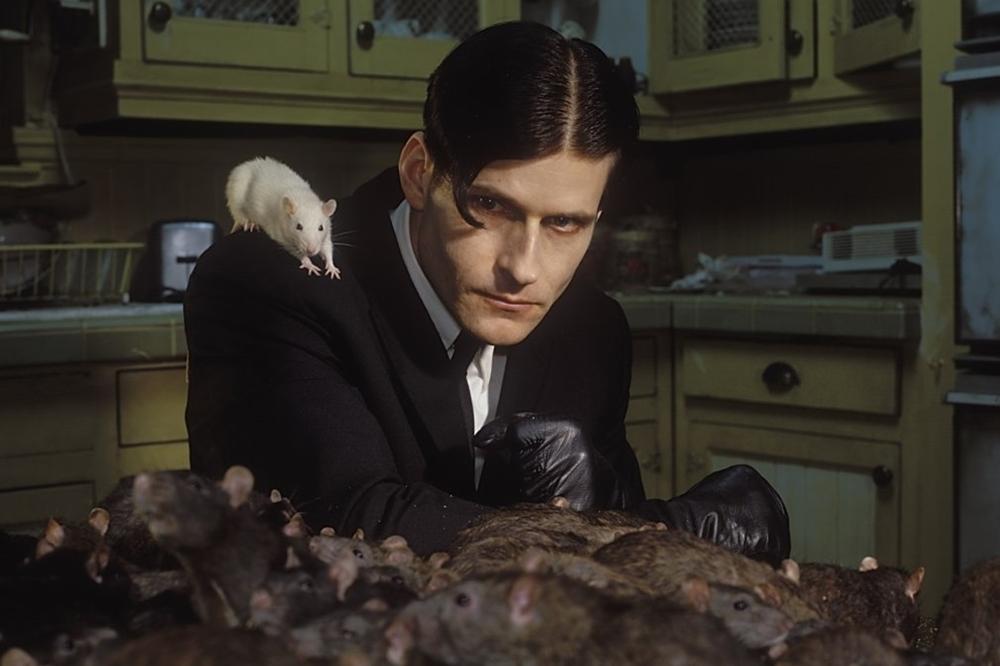 Willard nuôi cho mình cả một ''binh đoàn chuột''