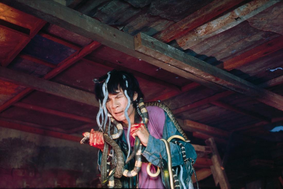 Kết cục bi thảm dành cho Chí Hoành, kẻ thích nuôi rắn.