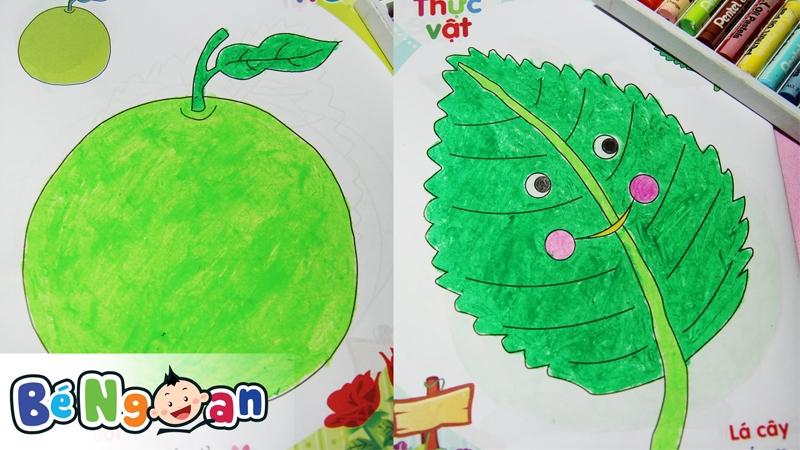 Tô màu quả táo