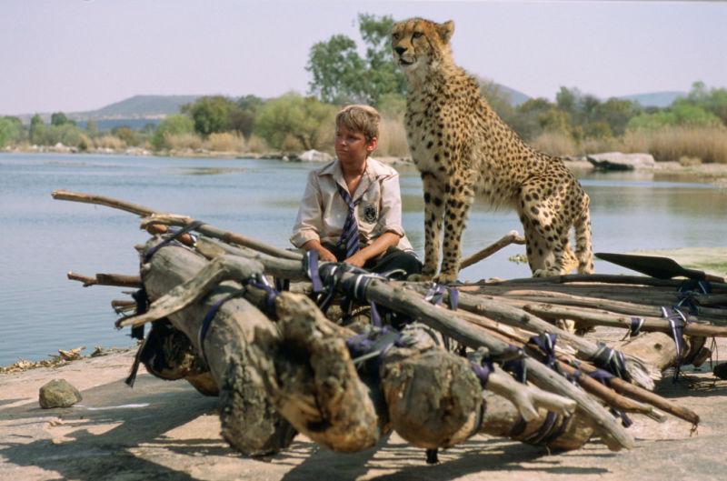 Xan phải tìm cách đưa Duma về với thiên nhiên trước khi mẹ cậu đưa chú báo vào sở thú.