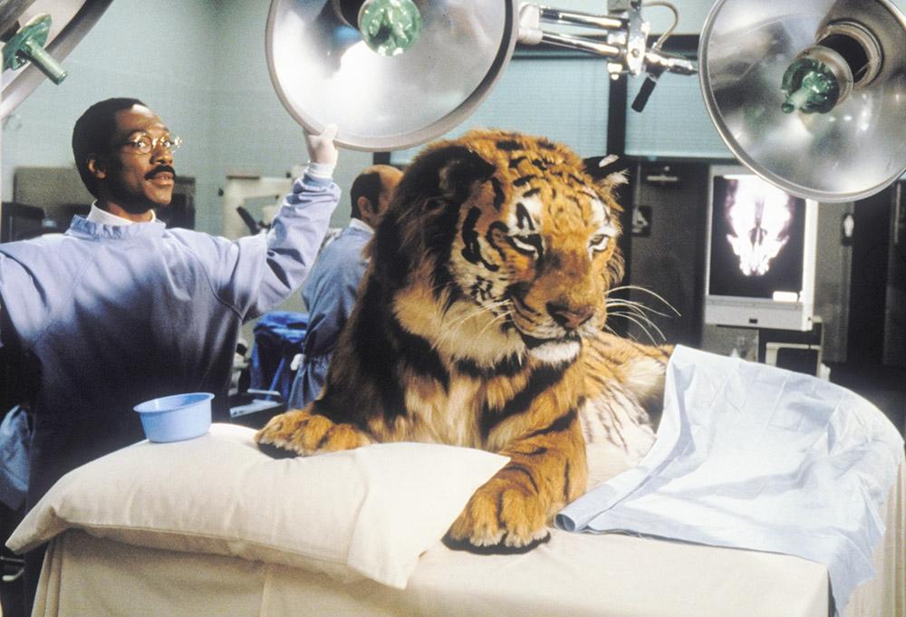 Chữa bệnh cho con hổ tại rạp xiếc bị ốm liệu có phải là chìa khoá để giải quyết mọi chuyện rắc rối của Dolittle?