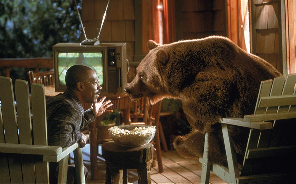 Nhiệm vụ lần này của bác sĩ Dolittle là giúp đỡ chú gấu Archie trở về sống trong thiên nhiên hoang dã.