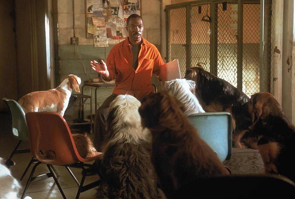Bác sĩ Dolittle có khả năng nói chuyện được với mọi loài vật.