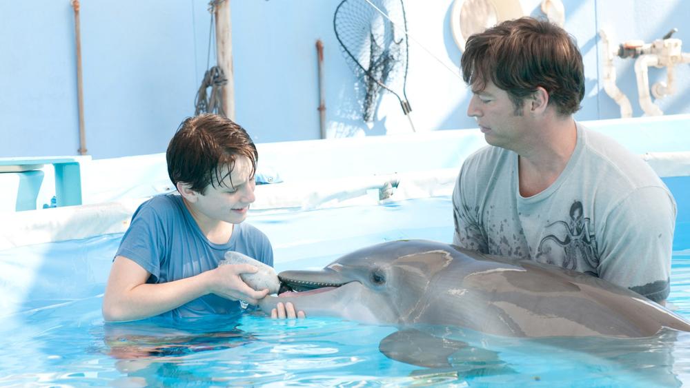 Sawyer nỗ lực thuyết phục mọi người để Winter sớm có một chiếc đuôi giả, giúp nó sớm được quay về biển cả.