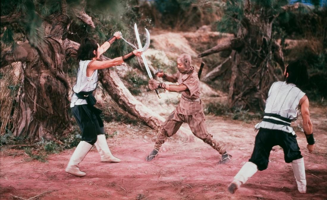 Một cảnh trong phim ''Five Elements Ninjas''.