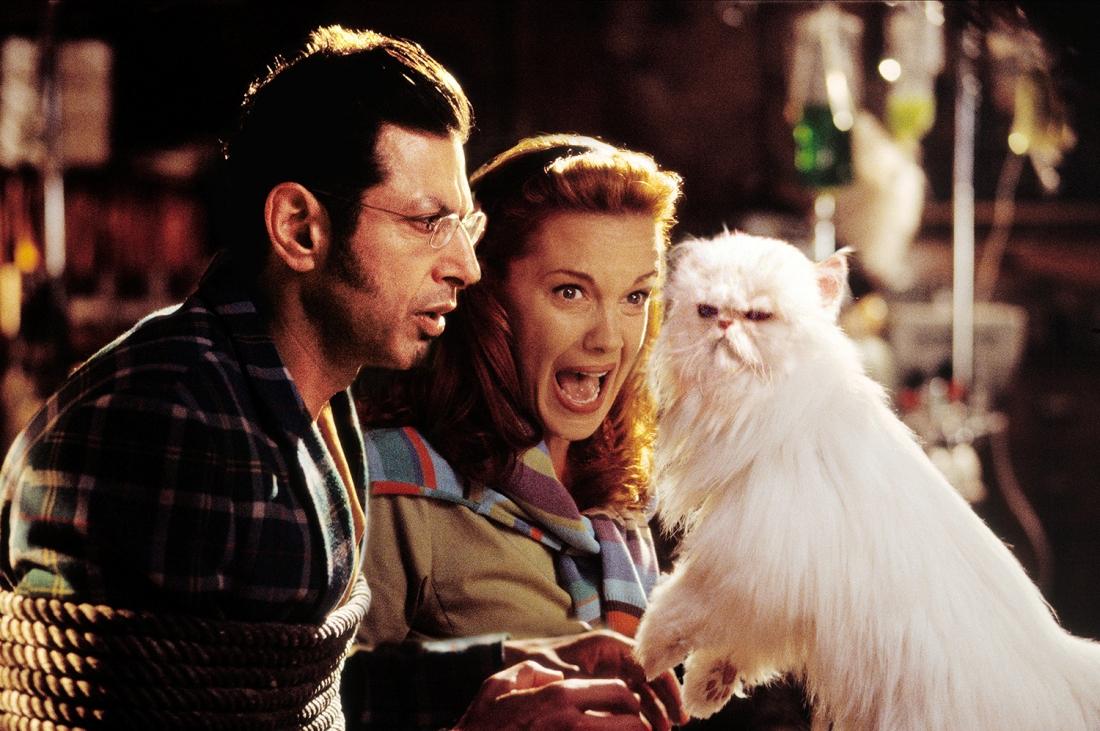 Việc đầu tiên mà lũ mèo làm là khống chế giáo sư Brody.
