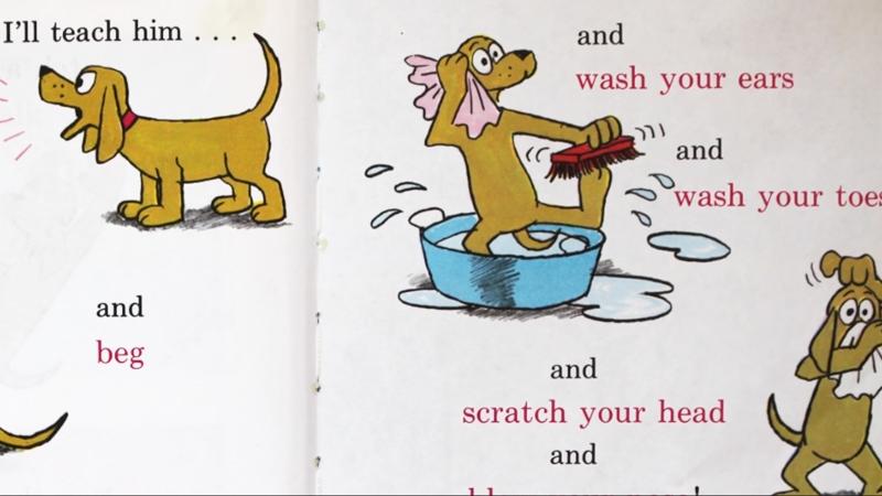 Chú chó đang học các từ mới tiếp theo.