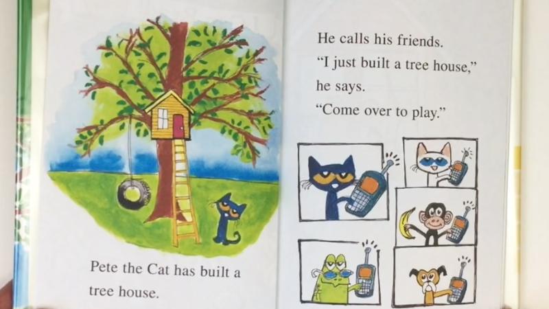 Chú mèo Pete khoe các bạn ngôi nhà trên cây của mình.
