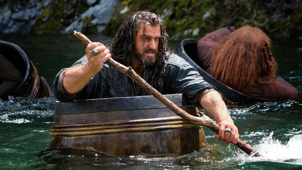 Họ mang trên mình một nhiệm vụ sử thi để đòi lại Ngọn Núi Cô Đơn và Vương quốc người lùn đã mất Erebor.