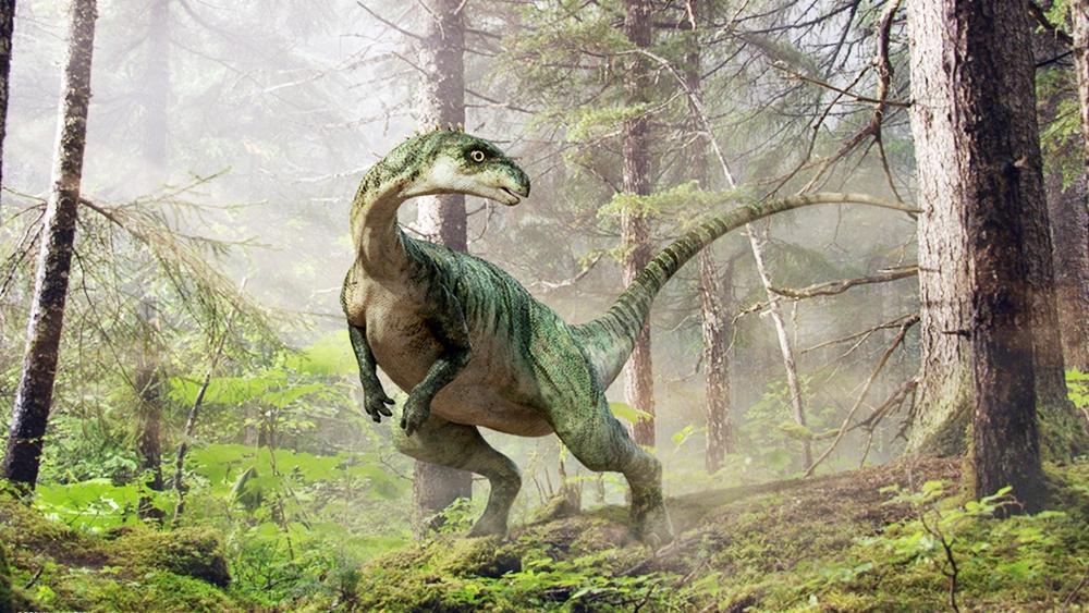 Nơi mà làm thế nào khủng long sống sót trong hàng triệu năm
