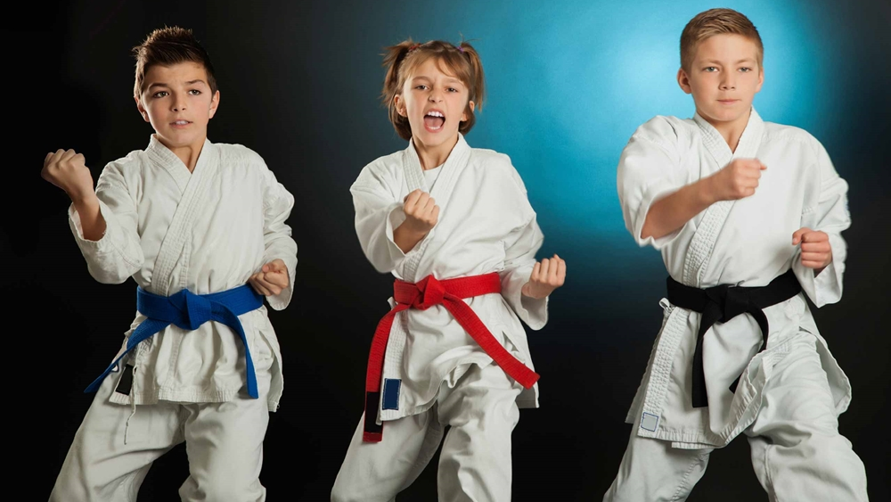 Karate là một môn võ thuật truyền thống của vùng Okinawa (Nhật Bản).