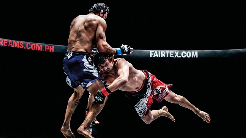 Mục đích của MMA là tìm ra một kỹ năng chiến đấu hoàn hảo nhất từ những môn võ khác nhau trên thế giới.