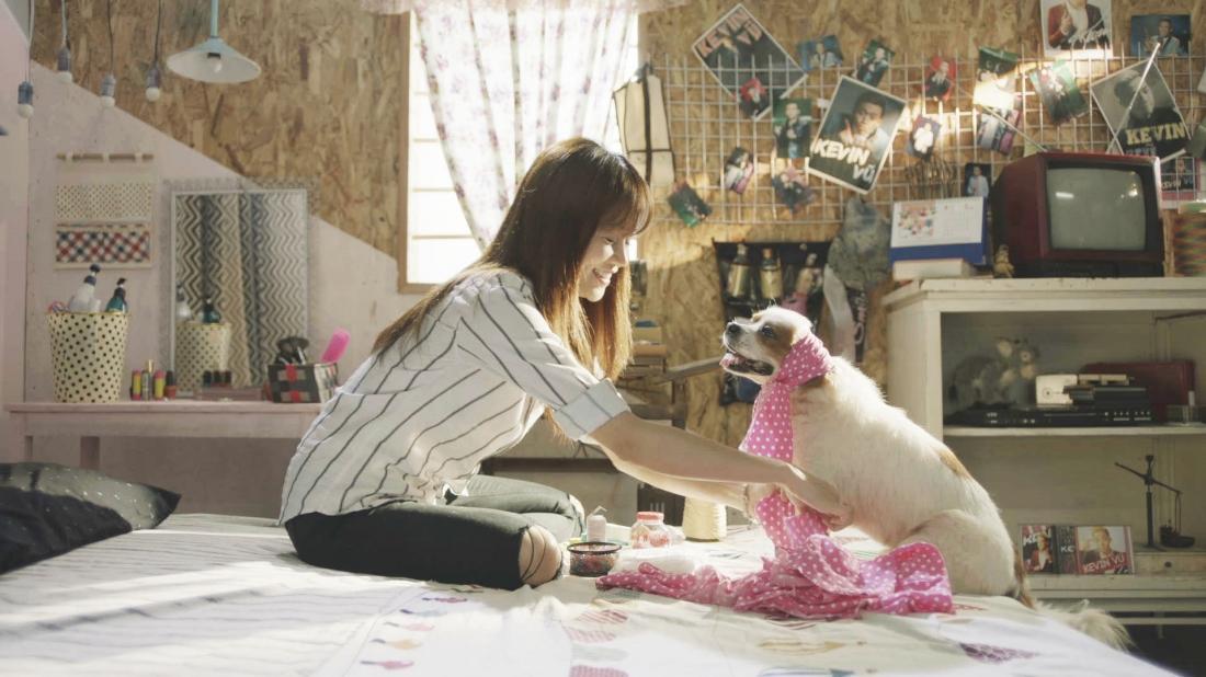 Trong một lần bị cướp, Ly chống cự mà không biết rằng cây bút thần kỳ mà bà lão tội nghiệp đã tặng lại biến tên cướp tên Mít thành một chú chó.