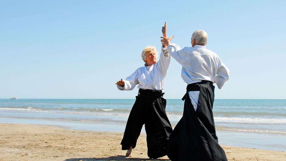 Aikido là một môn võ bao gồm những đòn ném và khóa khớp.