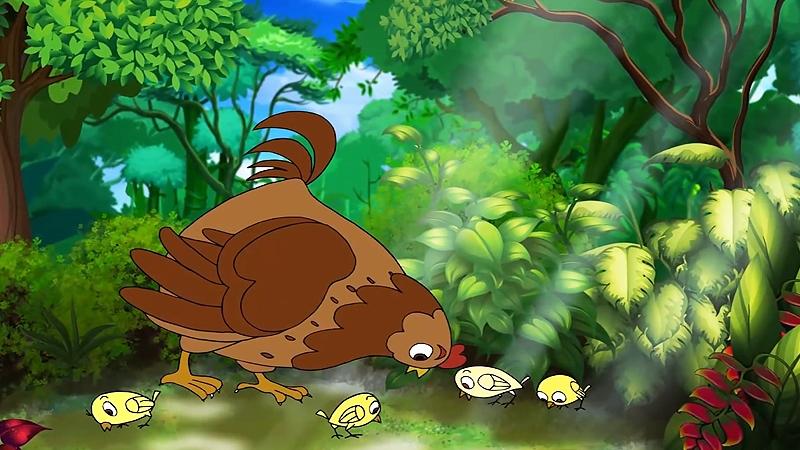 Mẹ con nhà gà đang kiếm ăn trong rừng.