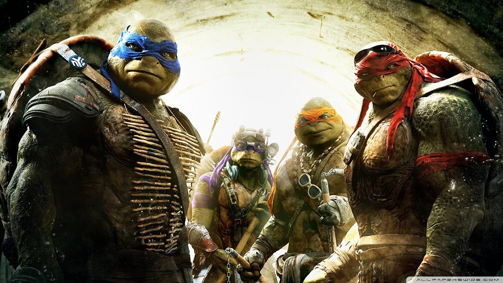 Bốn chú rùa là những ninja bí mật chiến đấu bảo vệ chính nghĩa và hòa bình trong thế giới ngầm của thành phố New York