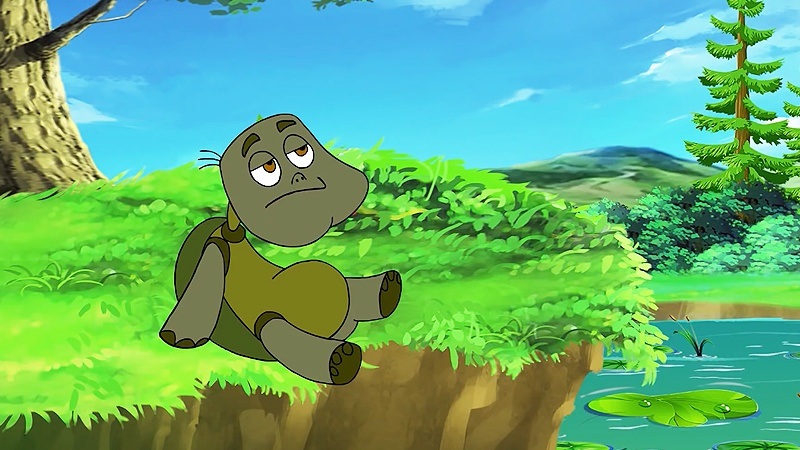 Chú rùa cạn đang nằm ở nhà mình.