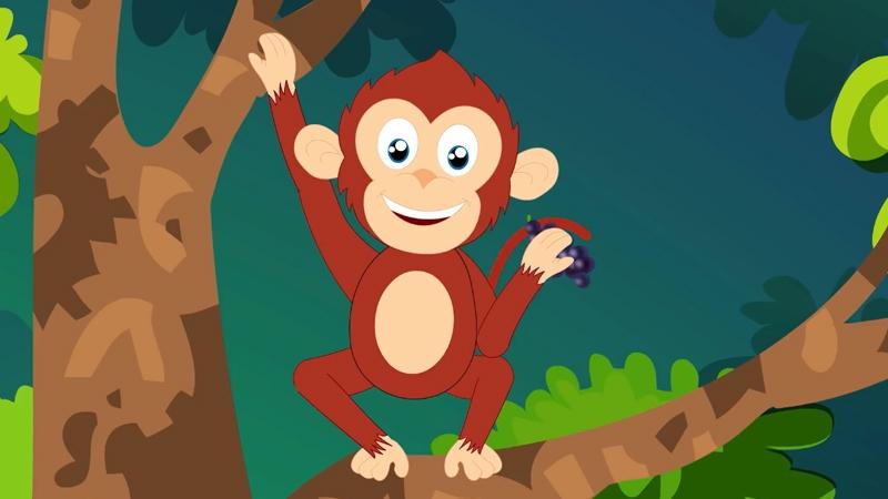 Chú khỉ đang ngồi trên cây ăn quả việt quất ngọt ngào.