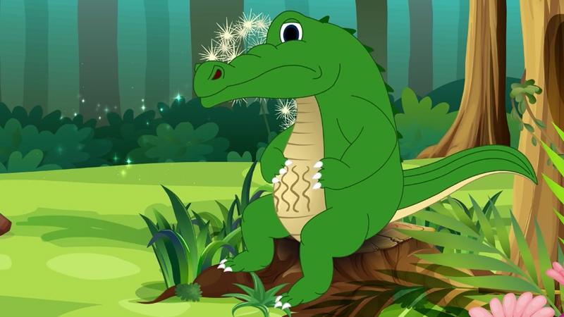 Cá sấu đang ngồi ở bờ để tìm đồ ăn trên mặt đất.