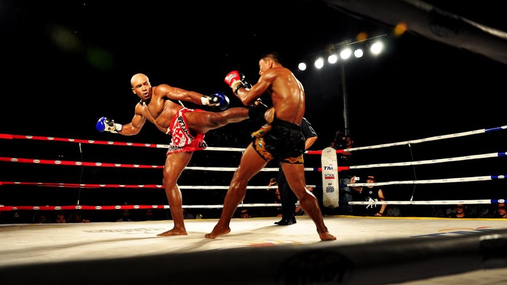 Muay Thái sử dụng tay, nắm đấm như Boxing, chân như Karate và các đòn xoay, khóa như Judo, Aikido...