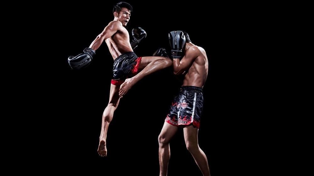 Do đó Muay Thái luôn được những võ sư và vận động viên võ thuật chuyên nghiệp sử dụng và luyện tập.