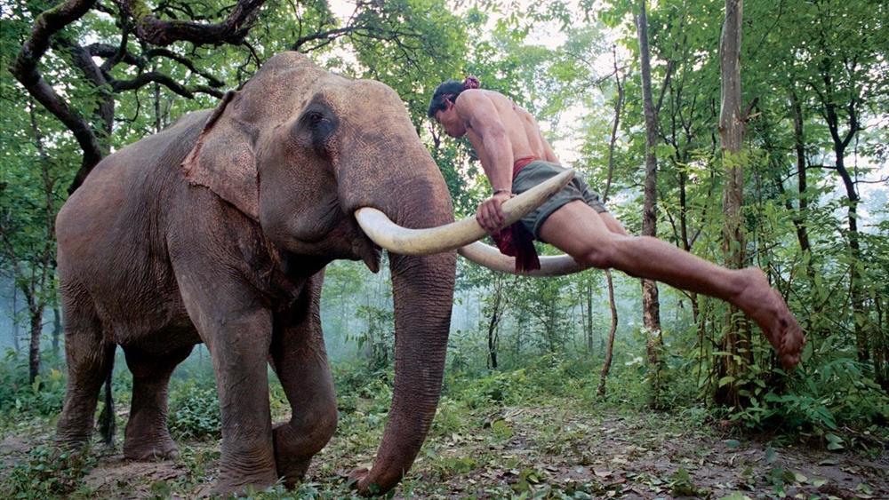 Kham - anh chàng chăn voi hiền lành, giỏi võ. Từ bé đã được cha dạy phải tôn kính và đối đãi với voi như người thân.