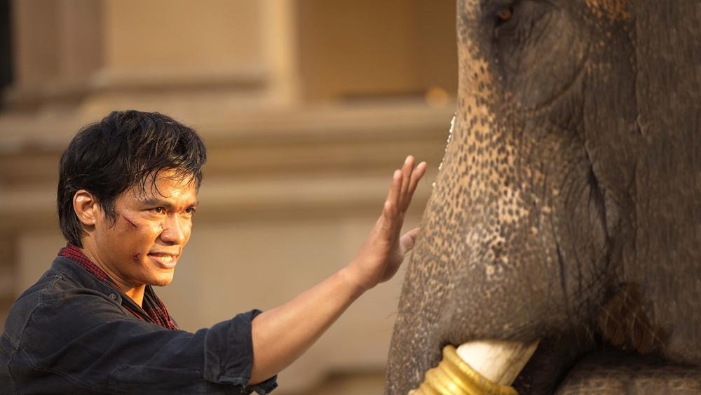 Sau cái chết của Boss Suchart, một ông chủ trại voi đầy quyền lực. Bọn sát thủ đã ngụy tạo chứng cứ để đổ tội cho Kham.