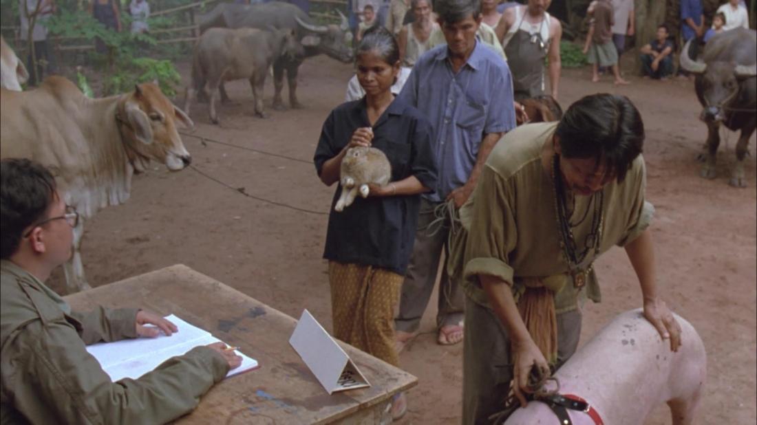Sau tai nạn của một người dân vì chó dại, cả làng đã chuyển sang nuôi các loại thú cưng khác nhau.