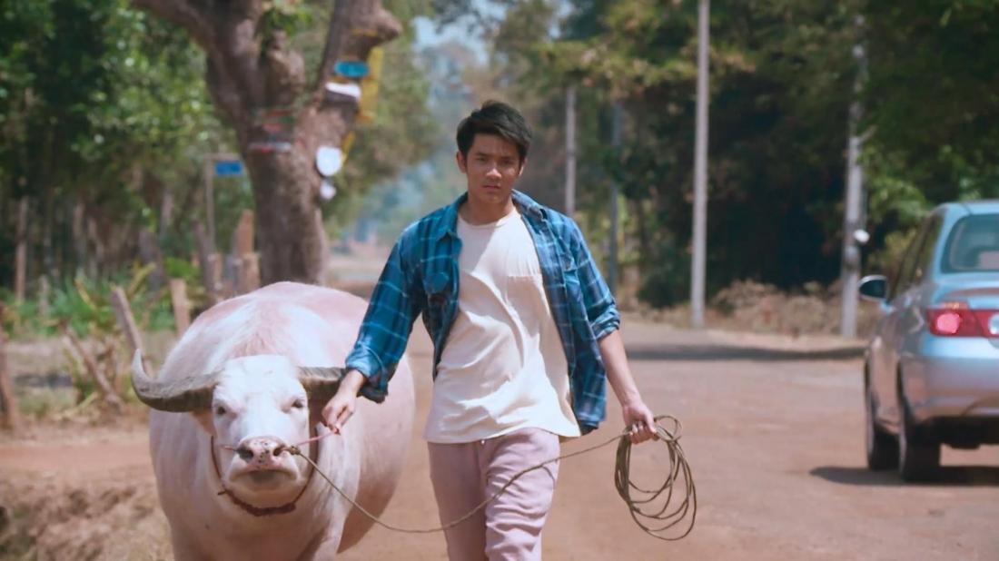 Chàng Mark thôi học về làng trong ''White Buffalo''.