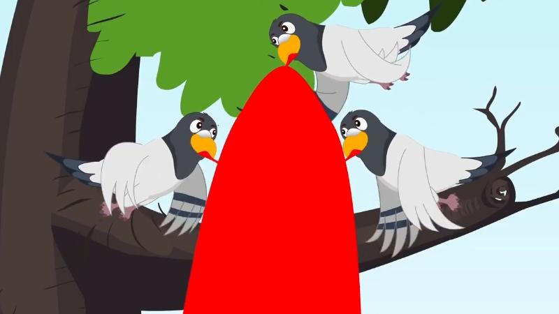 Ba con chim có chiếc áo choàng thần kỳ.