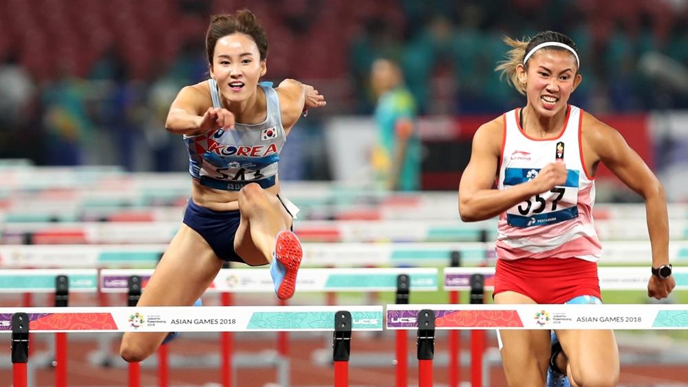 Tại ASIAD 18, Thể thao Việt Nam đã đạt được những thành công nhất định.