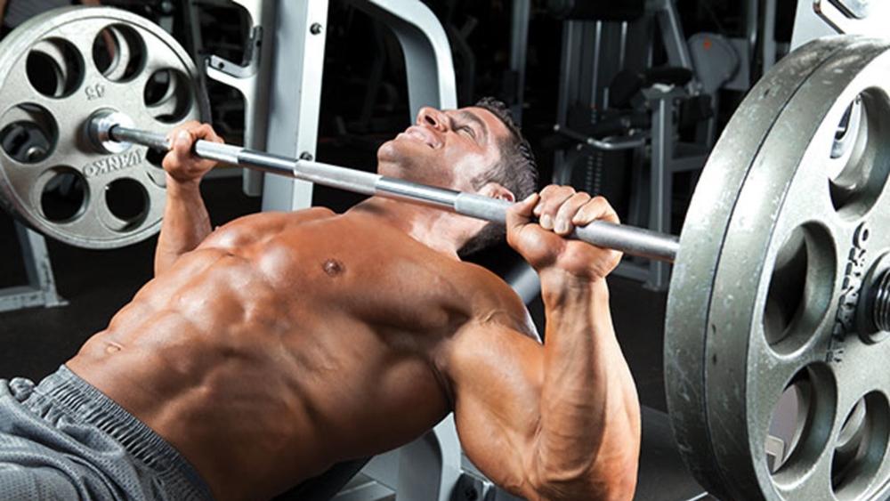 Cơ ngực là một trong những nhóm cơ quan trọng góp phần tạo nên một hình thể đẹp.