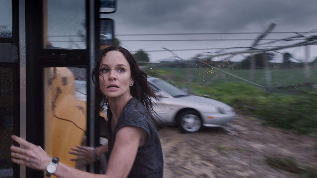 Sarah Wayne Callies trong vai Allison.