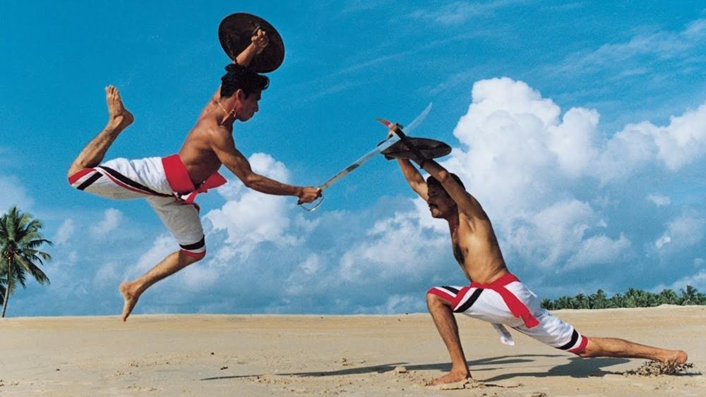 Hướng dẫn những bài võ nội phái thuộc nhiều phái khác nhau, với những chiêu thức biến ảo và đặc sắc.