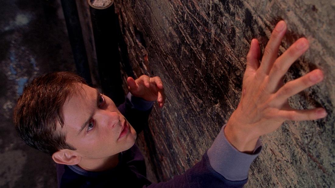 Trong một lần đi thăm khu nghiên cứu loài nhện, Peter bị cắn bởi một chú nhện. Sau khi bị hôn mê, tỉnh dậy anh trở nên vạm vỡ và có những khả năng phi thường.