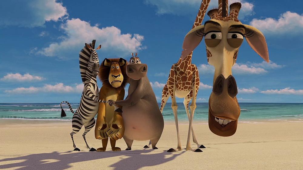 Một con sư tử, con ngựa vằn, một hươu cao cổ và một con hà mã kết bạn với nhau