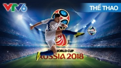 Toàn Cảnh World Cup