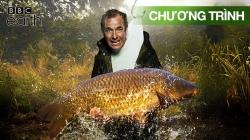 Mẻ Cá Đỉnh Cao Của Robson Green (Tập 2)