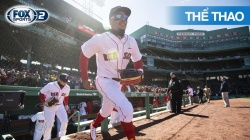 MLB Regular Season 2019