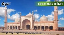 Những Nhà Thờ Hồi Giáo Tráng Lệ