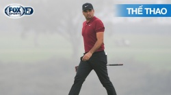 Pga Championship 2020 Highlights: Day 4