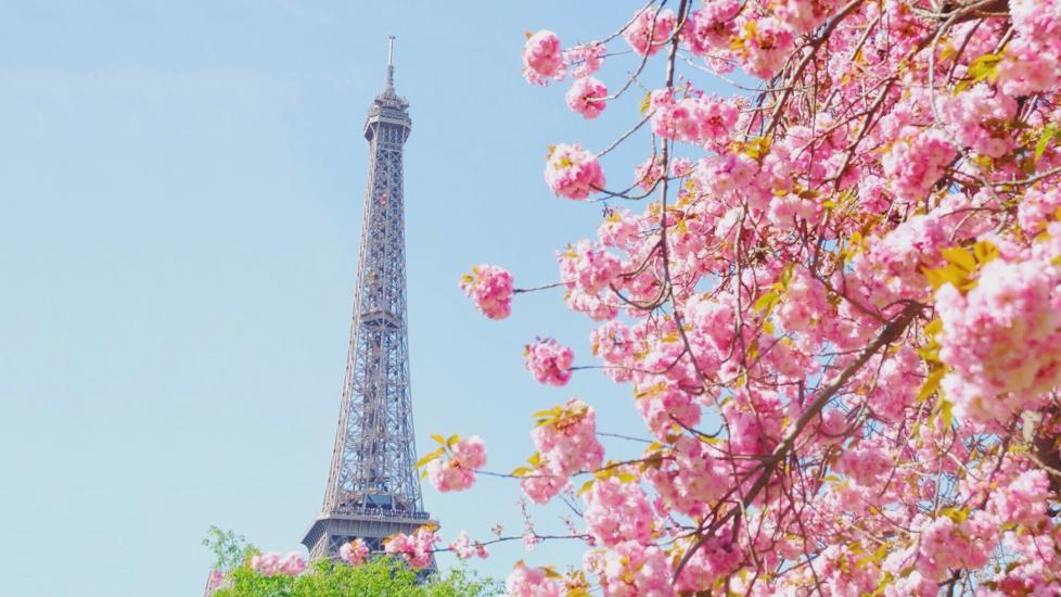 Du Lịch Thế Giới Mùa Xuân