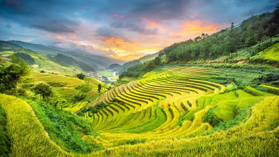 [4K] Mù Cang Chải - Ruộng Bậc Thang Đẹp Nhất Việt Nam