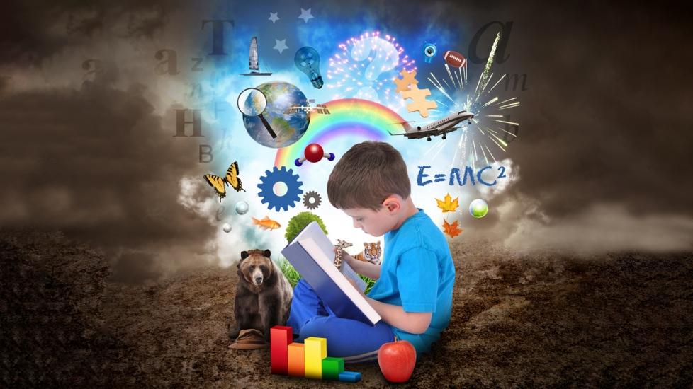 Dạy Trẻ Đọc Sớm Theo Phương Pháp Glenn Doman